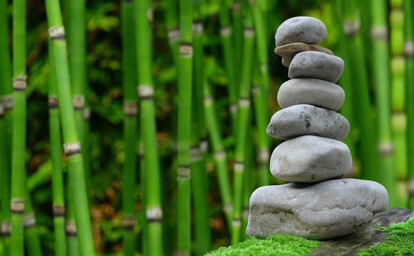 Piękny ,a także zadbany ogród to zasługa wielu godzin spędzonych  w jego zaciszu w toku pielegnacji.